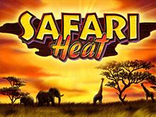 Играть на деньги Safari Heat