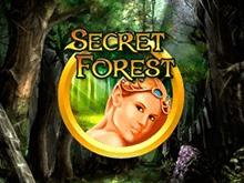 Игровые автоматы Secret Forest