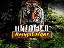 Аппарат Untamed Bengal Tiger от Microgaming на официальном сайте